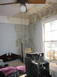 black mold on walls